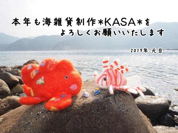 f:id:kasa-umi:20181230012610j:plain