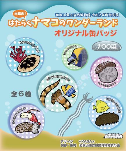 和歌山県立自然博物館『はたらくナマコのワンダーランド』缶バッチデザイン