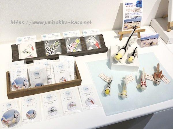 KASAハゼAQUA企画展展示の様子