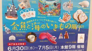 金魚と海のいきもの展2021 (1)