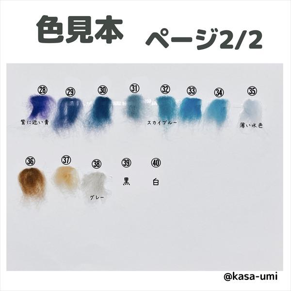KASAオーダーウミウシ羊毛カラー見本 (2)