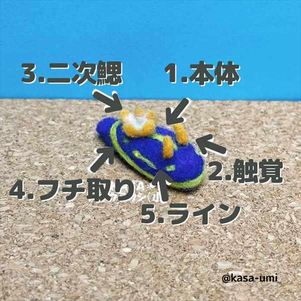 KASAオーダーウミウシ (8)